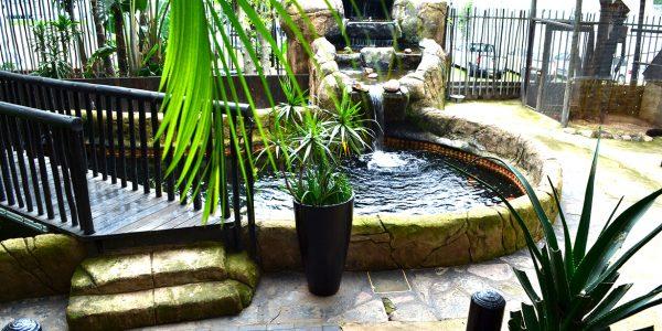 Khoi-garden1